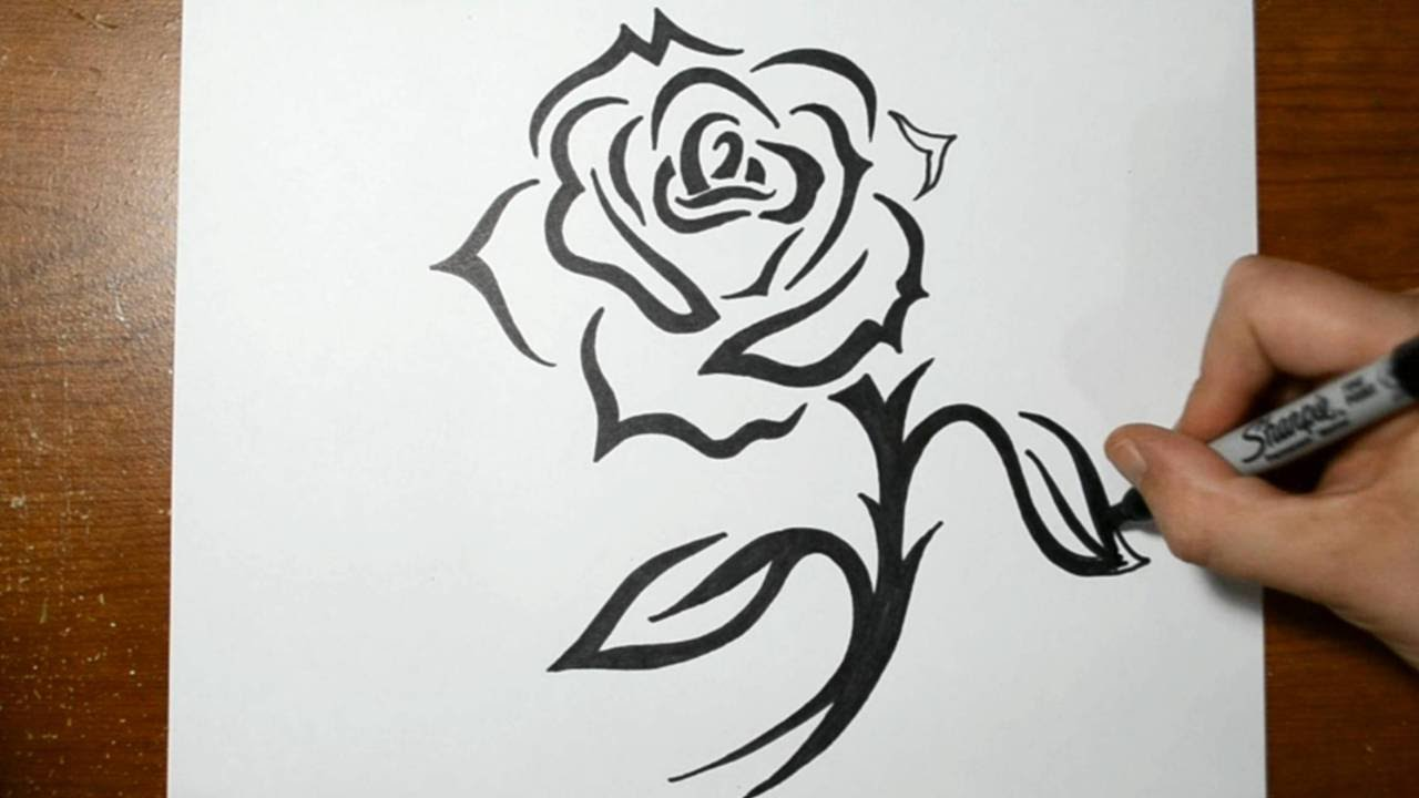 Drawn rose sharpie Rose How with a Design