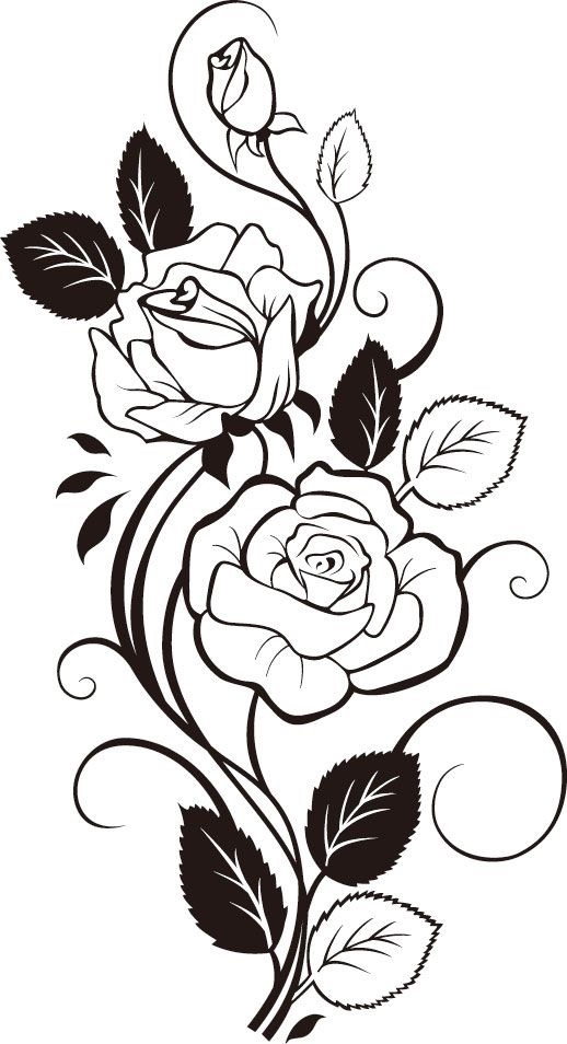 Drawn rose side About Roses Stickers  Flowers