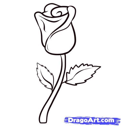 Drawn rose simple Pop Download Free Art Step