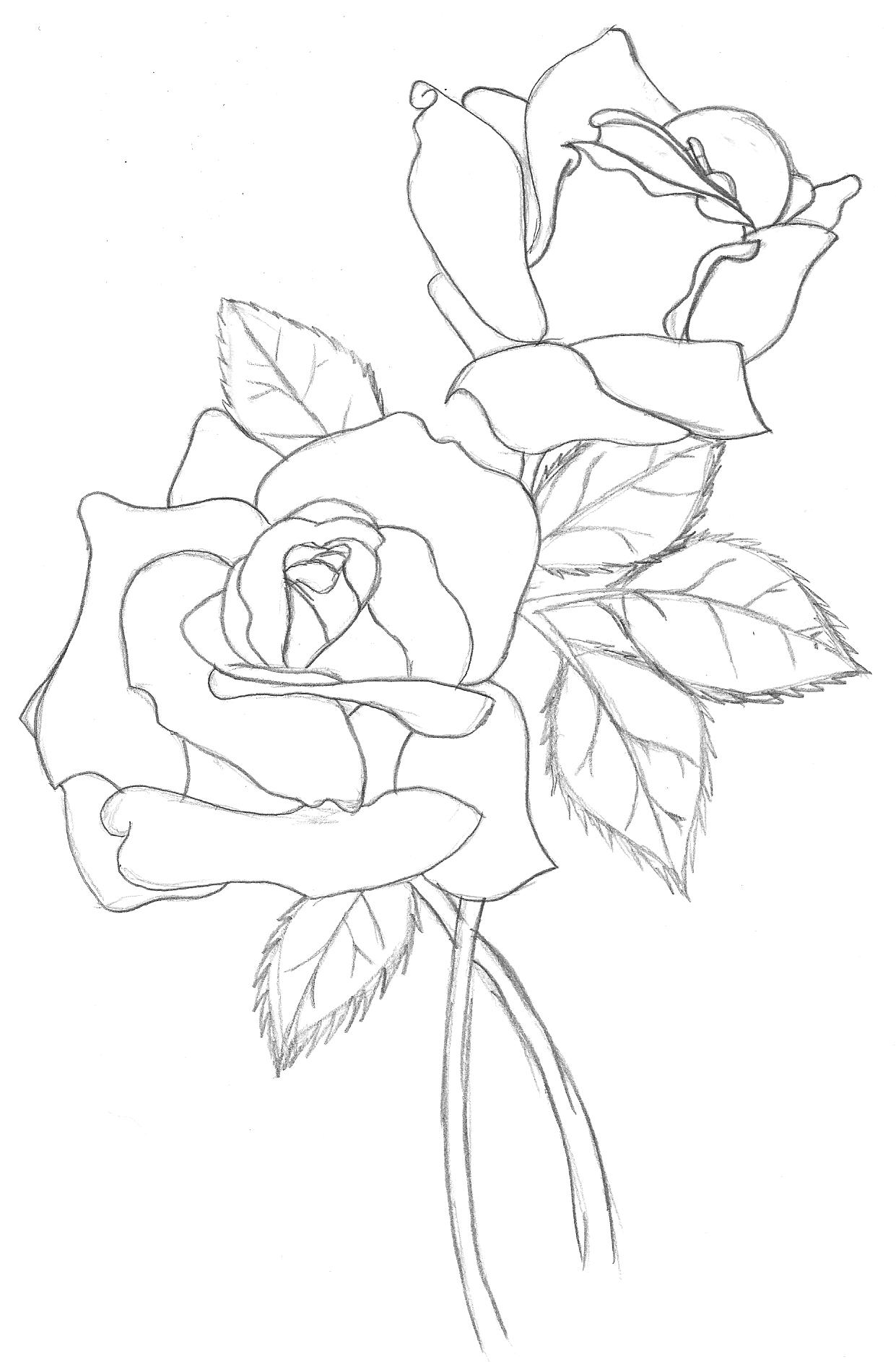 Drawn rose simple realism This Tattoo an  are