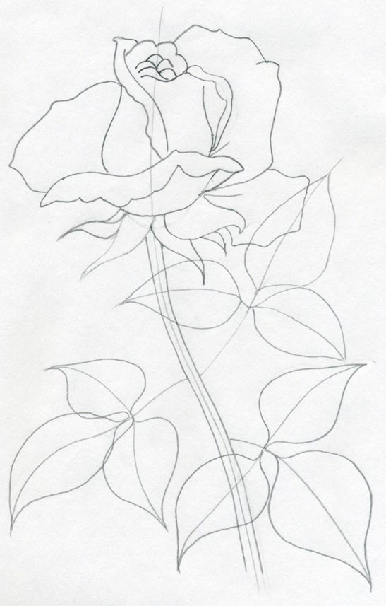 Drawn rose simple realism Draw you'll Simply rose Quickly