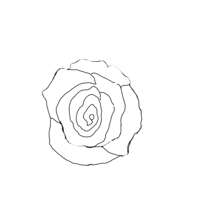 Drawn rose simple realism With I one two Realistic