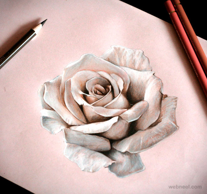 Drawn rose sketching Paintings rose 25 Beautiful Drawings