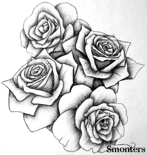 Drawn rose sketching 30 flowers images Pinterest best