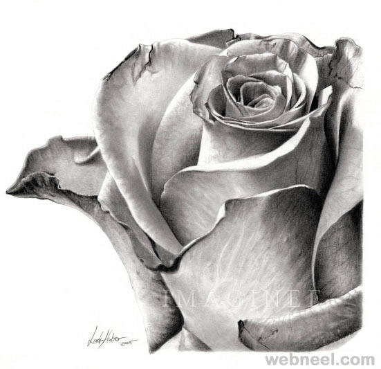 Drawn rose sketching Inspiration Beautiful Drawings and for