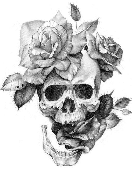 Drawn rose skull inside Drawings of on 20+ Skulls