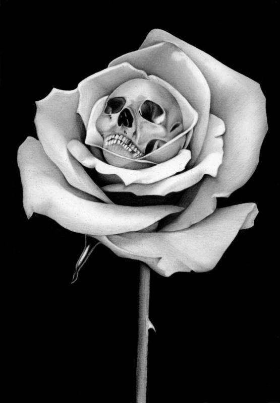 Drawn rose skull inside Beauty & on Print 68