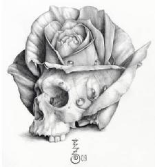 Drawn rose skull inside On Drawings of Pinterest Zarro