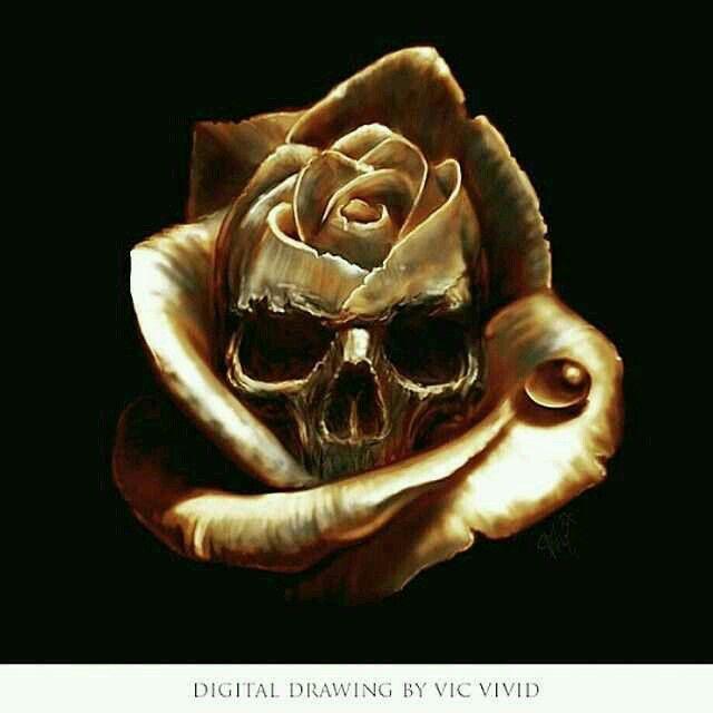 Drawn rose skull inside Skull Rose Pinterest images about