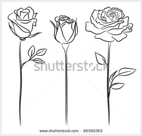 Drawn rose small On images drawing Rose more