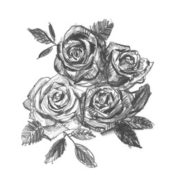 Drawn rose small  Free Royalty Rose Butterfly