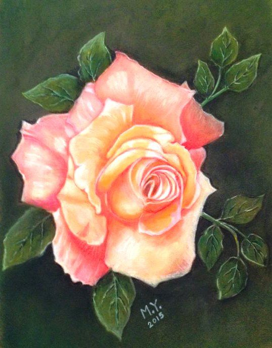 Drawn rose soft pastel Drawing : Rose by on