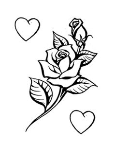 Drawn rose stem outline Rose for drawing vine outline