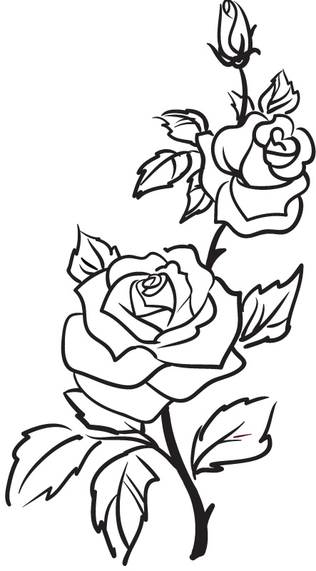 Drawn rose stem outline Rose Rose  Stickers Wall