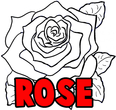 Drawn rose step by step Step in Tutorial Opening to