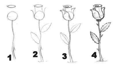 Drawn rose step by step This I It's a rose