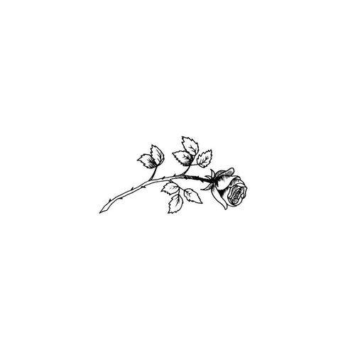 Drawn rose tiny rose Pinterest and tattoo white Rose