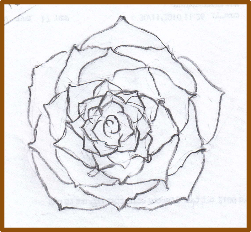 Drawn rose top To draw a links How