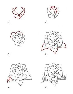 Drawn rose top Drawing Style by Tattoo and