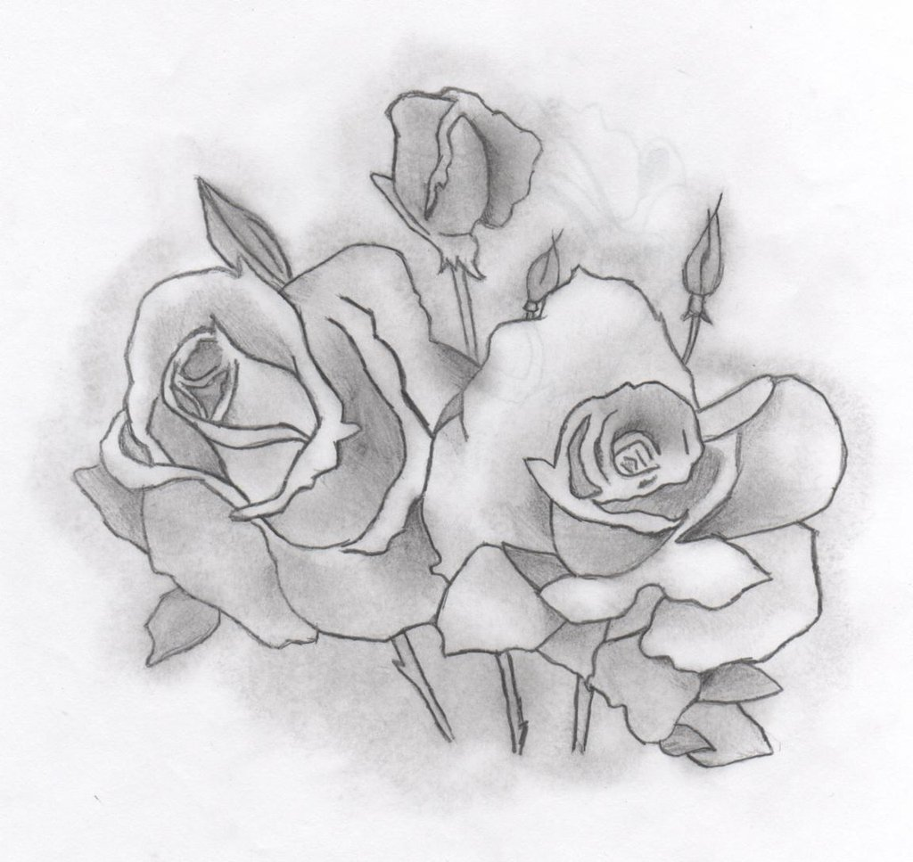 Drawn rose two Hand by Roses Hand by