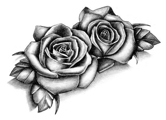 Drawn rose two On in style! of of