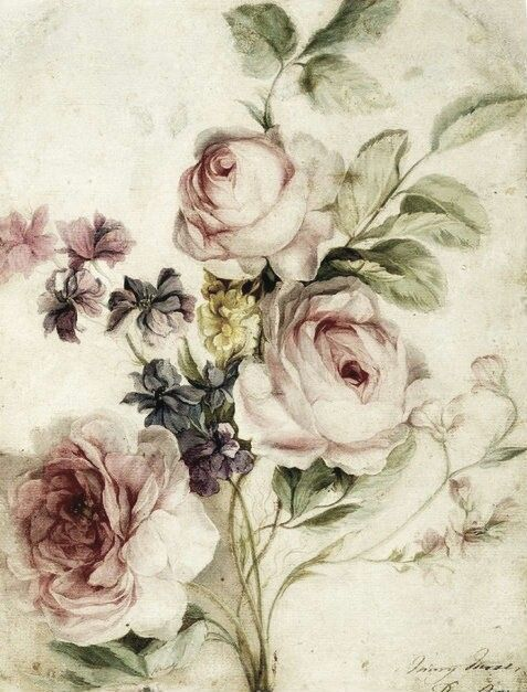 Drawn rose vintage Pinterest flowers tattoo flower border