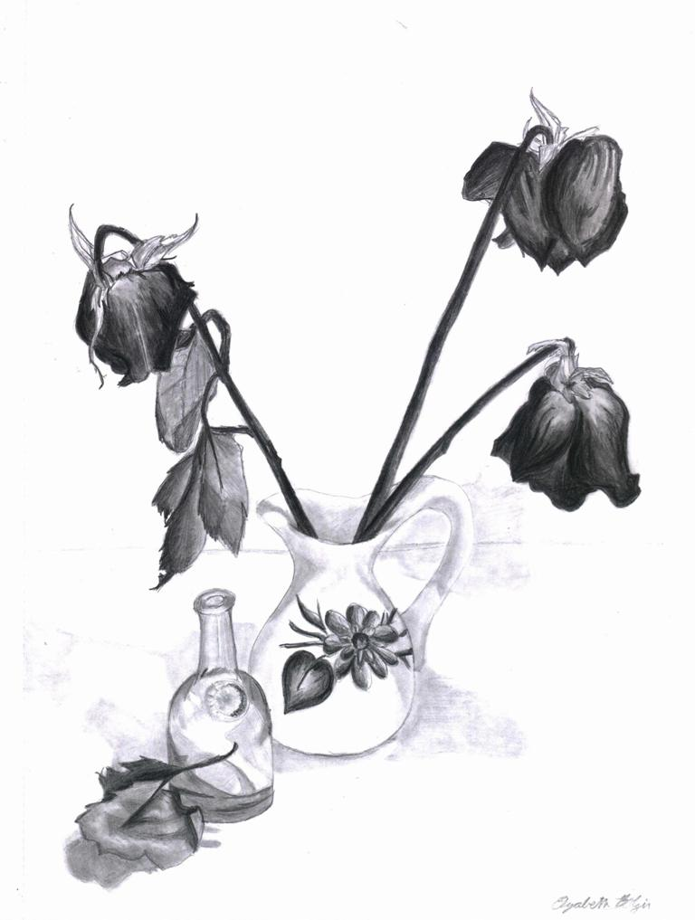Drawn rose wilted DeviantArt Rose Wilted by by