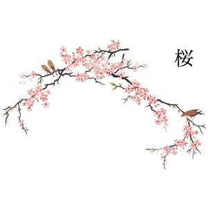 Drawn sakura blossom Blossoms Polyvore Cherry Pottery Fine