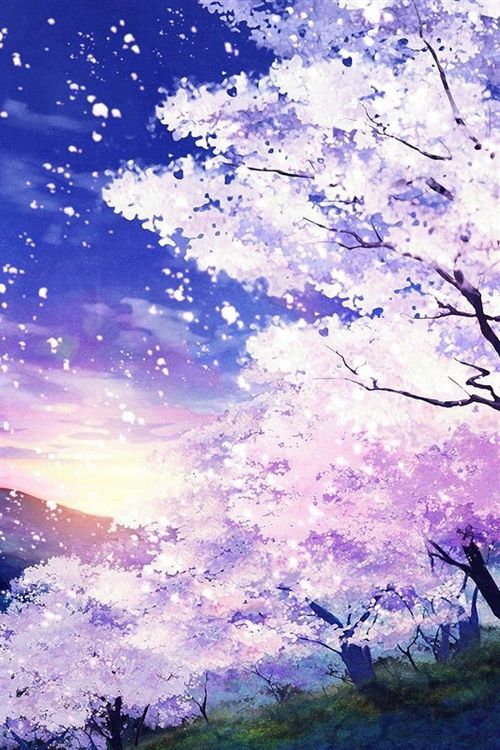 Drawn sakura blossom anime (◕‿◕✿) on Cherry 107 Pinterest