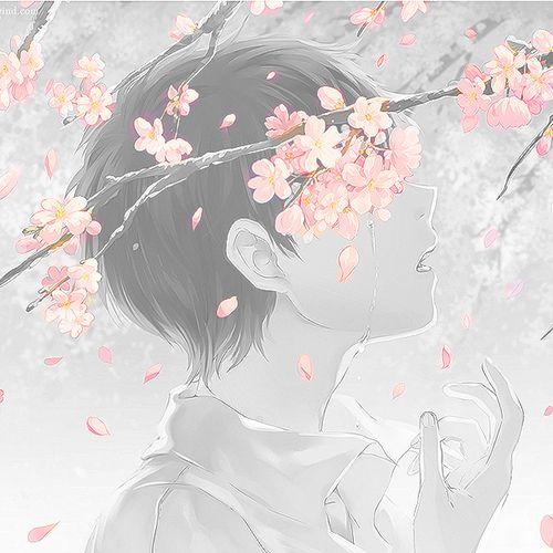 Drawn sakura blossom anime Pinterest Through] Through] Cherry (40)