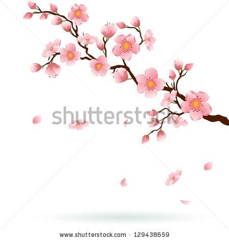 Drawn sakura blossom apple blossom To with similar similar ID
