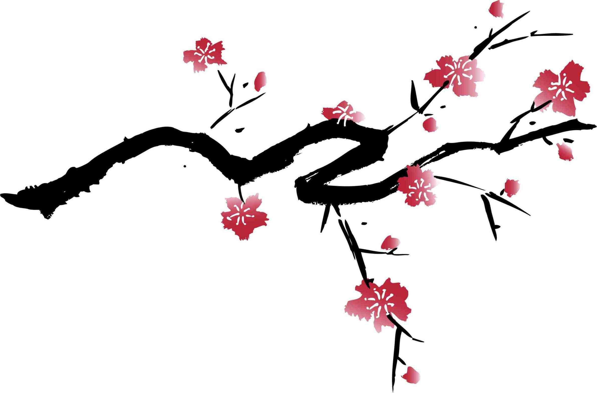 Drawn sakura blossom black and white Black – Cherry White Art