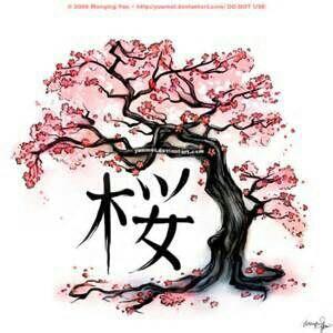 Drawn sakura blossom bonsai tree Ideas Tree  Blossom Cherry