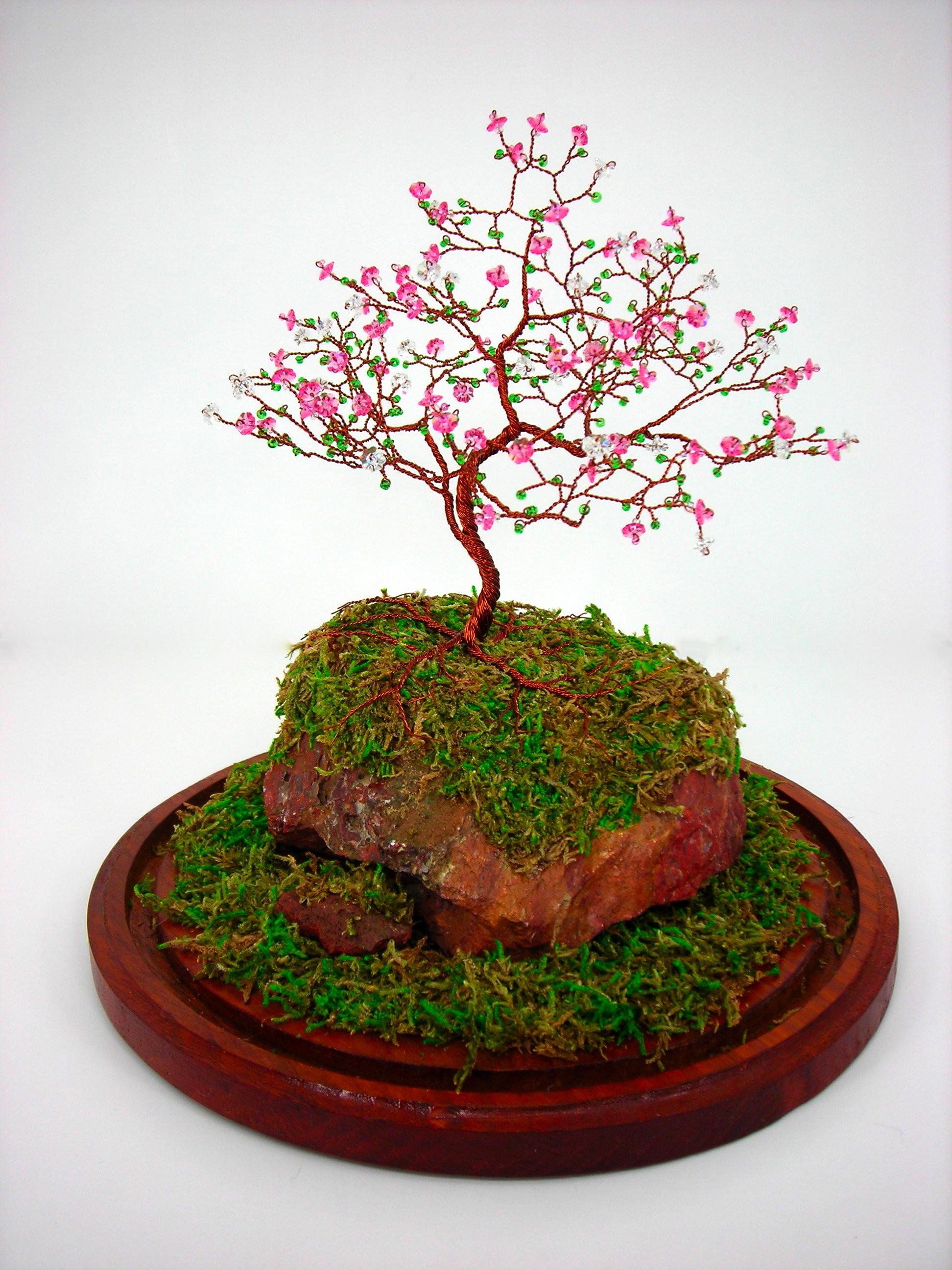 Drawn sakura blossom bonsai tree Blossom Blossom Blossom and trees