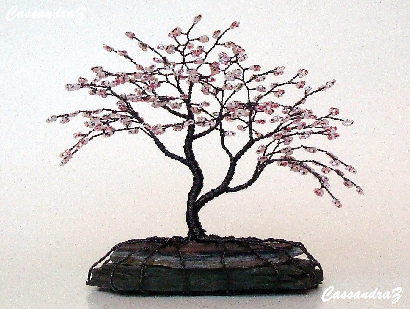 Drawn sakura blossom bonsai tree For Tree jpeg Bonsai x