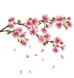 Drawn sakura blossom cartoon  Bing Cherry Cherry photos