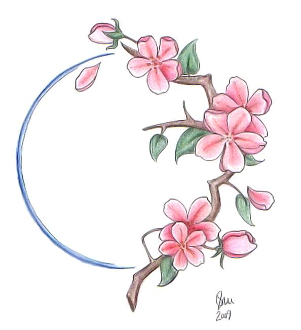 Drawn sakura blossom cerry Sakura Drawing Pencil Pencil IMGFLASH
