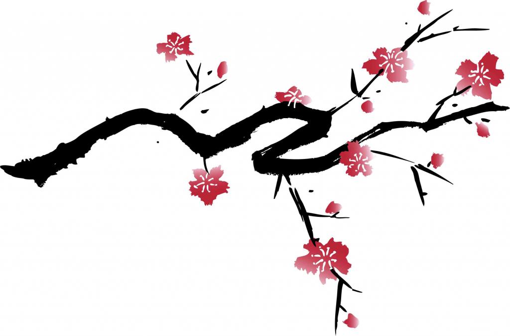Drawn sakura blossom chery Flower Drawing Sakura  Flower