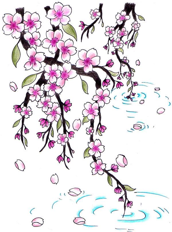 Drawn sakura blossom chery  @DeviantArt Cherry on Cherry