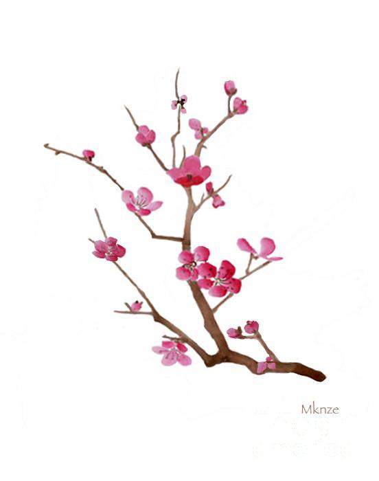 Drawn sakura blossom chinese Tattoo Cherry blossoms 2f Cherry