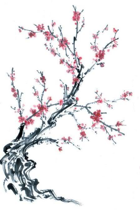 Drawn sakura blossom chinese Blossom Tree VICKIE  Tree