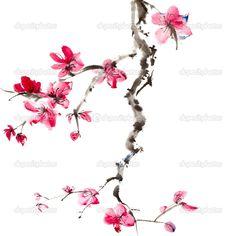 Drawn sakura blossom chinese Peng tree # blossom painting