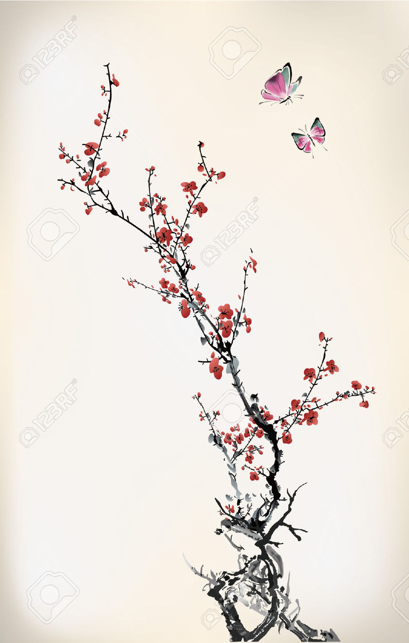 Drawn sakura blossom chinese Cherry Black White  Blossom