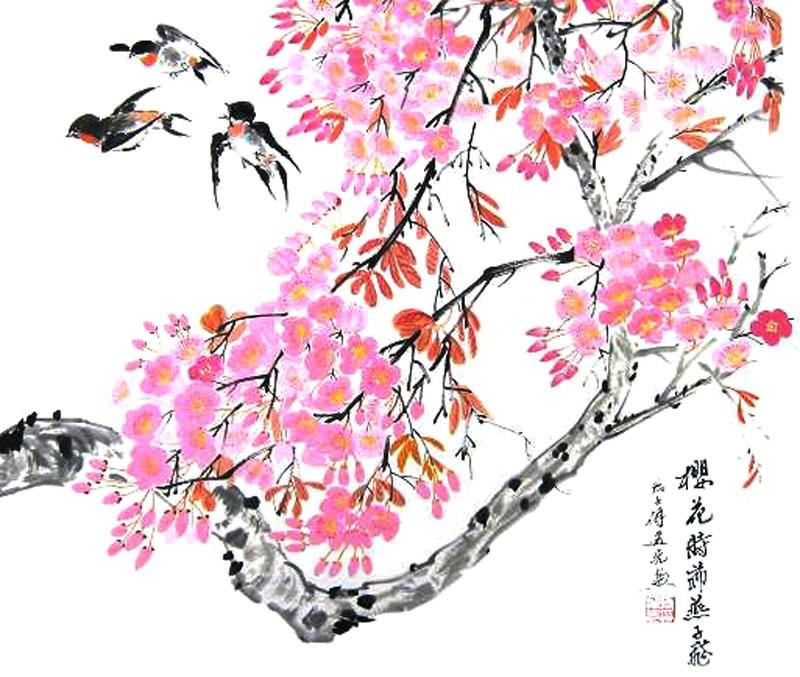 Drawn sakura blossom chinese Blossom / Pinterest  Cherry