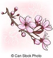 Drawn sakura blossom clip art 739 sakura Blossom Illustrations illustration