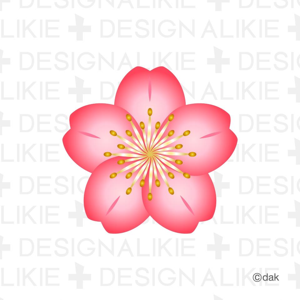Drawn sakura blossom clip art Sakura Blossom Clip Art Clipart