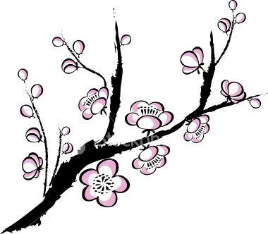 Drawn sakura blossom clip art On Illustration Plum blossom Royalty