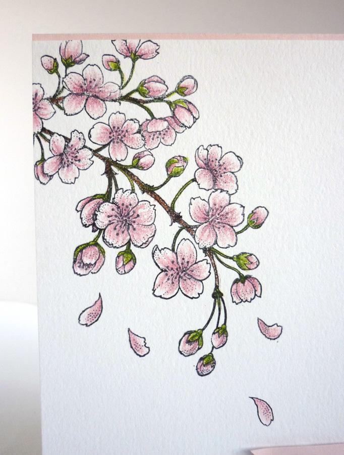 Drawn sakura blossom doodle Cherry Blossoms Cherry Wonderland: Blossoms