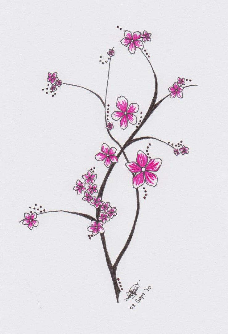 Drawn sakura blossom doodle Blossom  Flower by &