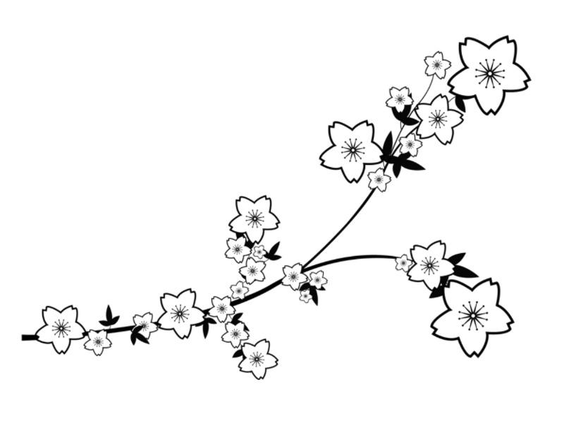Drawn sakura blossom doodle Blossoms Blossoms 4 Sakura Sakura